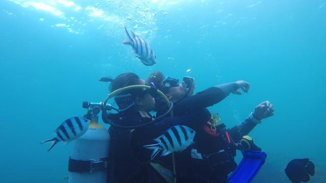 沖縄 ダイビング 安全 レスキュー 観光