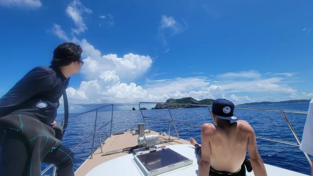 慶良間 沖縄 観光 ダイビング ウミガメ