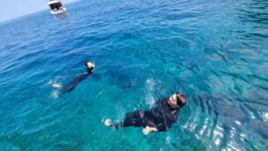 沖縄 慶良間 FUN 体験 ダイビング