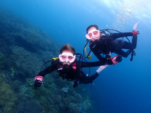 宜野湾 ダイビング 体験 沖縄 観光