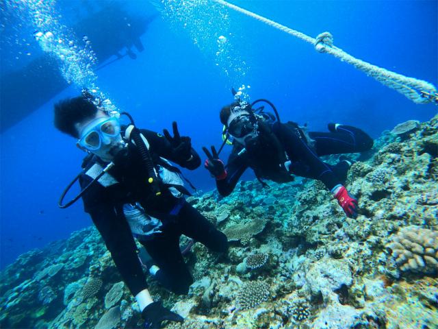 沖縄 ダイビング 講習 慶良間 ビーチ