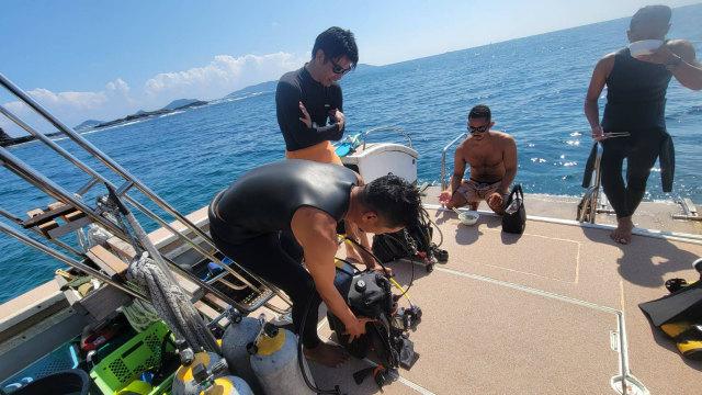 慶良間 沖縄 ダイビング 海 体験