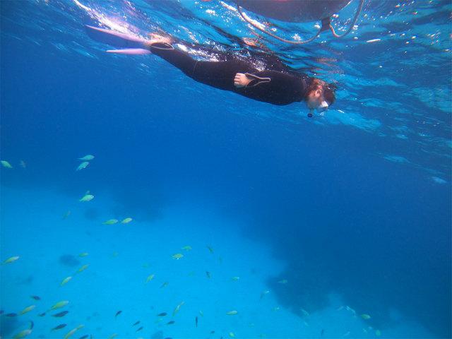 慶良間 ダイビング 沖縄 ライセンス 観光